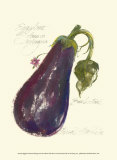 Eggplant Solanum Melongena