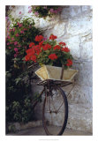 Flower Box Bike
