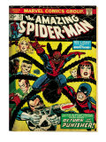 Marvel Comics Retro: The Amazing Spider-Man Comic Book Cover 135  Return of the Punisher! (aged)