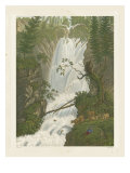 Tranquil Cascade I