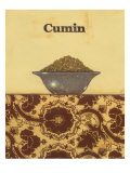 Exotic Spices - Cumin