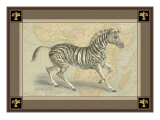 Zebra with Border II