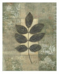 Leaf Textures II
