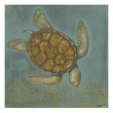 Sea Turtle I