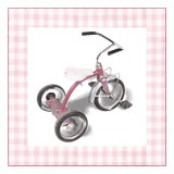Krista&#39;s Tricycle