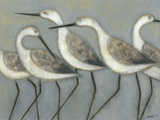 Shore Birds I Reproduction d'art par Norman Wyatt Jr.