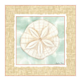 Ocean Sanddollar