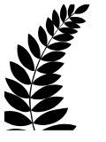 Leaf Silhouette I