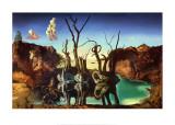 Cygnes reflétant des éléphants, vers 1937 Reproduction d'art par Salvador Dalí