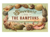 Souvenir from the Hamptons  Long Island  New York