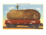 Giant Potato on Rail Car  Maine