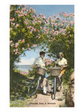 Bicyclists with Oleanders  Bermuda