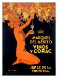 Marques Vinos y Cognac
