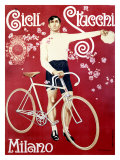 Cicli Stucchi Milano