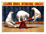 Adams Brothers Circus