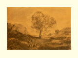 Landscape with a Tree