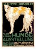Hunde Ausstellung