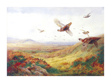 Partridges in Flight