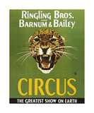 Barnum And Bailey Circus