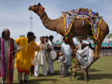 Pakistan Folk Dancers Perform; Owner Sits with His Camel, Annual Festival Horse and Cattle Show Papier Photo