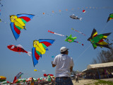Member of Indonesia Kite Team Flies Kite with Series of Colorful Bird Sales  Vung Tau City  Vietnam
