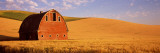 Old Barn in a Wheat Field  Palouse  Whitman County  Washington State  USA