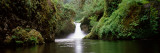 Waterfall in a Forest  Punch Bowl Falls  Eagle Creek  Hood River County  Oregon  USA