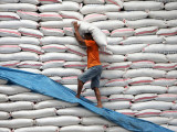 Worker Carries a Sack of Rice for Stock Inside a Government Warehouse