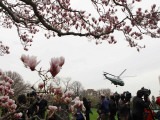 Marine One  with President Obama Aboard  Lifts Off from the South Lawn of the White House