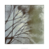 Diffuse Branches II
