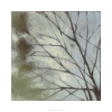 Diffuse Branches I