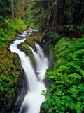 Sol Duc Falls in Olympic National Park  Washington  USA