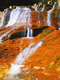 Waterfall Along North Creek  Zion National Park  Utah  USA