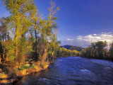 The Gallatin River Near Bozeman  Montana  USA