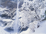 Multnomah Falls in Snow Covered Forest  Columbia Gorge National Scenics Area  Oregon  USA