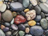Wet Pebbles  Ruby Beach  Olympic National Park  Washington  Usa Coast