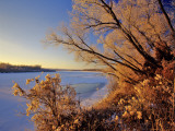 Winter on the Yellowstone River Near Cartwright  North Dakota  USA