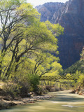 Bridge across River with Mountains in Background  Virgin River  Zion National Park  Utah  USA