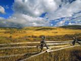 Mount Haggin Nwr Near Anaconda  Montana  USA