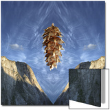 Floating Douglas Fir Cone over Symmetrical Cliffs and Symmetrical Cloud Pattern in Sky