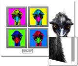 Staring Emus