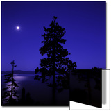 Full Moon in Night Sky over Trees and Lake Tahoe  Nevada  USA