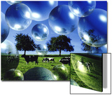 Bubble Pasture  Bergisch Land  Germany