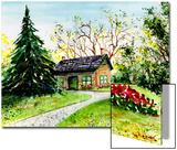 Small House Beside Huge Evergreen Tree