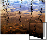Reflections of Boat Masts in a Lake