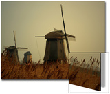 Moody Landcsape Windmills in the Netherlands