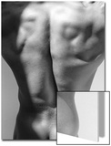 Muscular Shot of Male Back