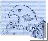 Bald Eagle Illustration