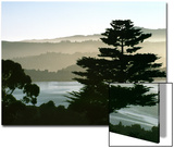 Hazy Mountain Lake  Seen from Top of Hill in Tiburon  Northern California  USA