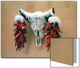 Snowy Cow Skull on Wall with Chili Ristras Hanging on Horns  Santa Fe  New Mexico  USA